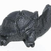 Черепаха черная