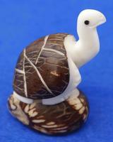 Черепаха с вытянутой шеей
